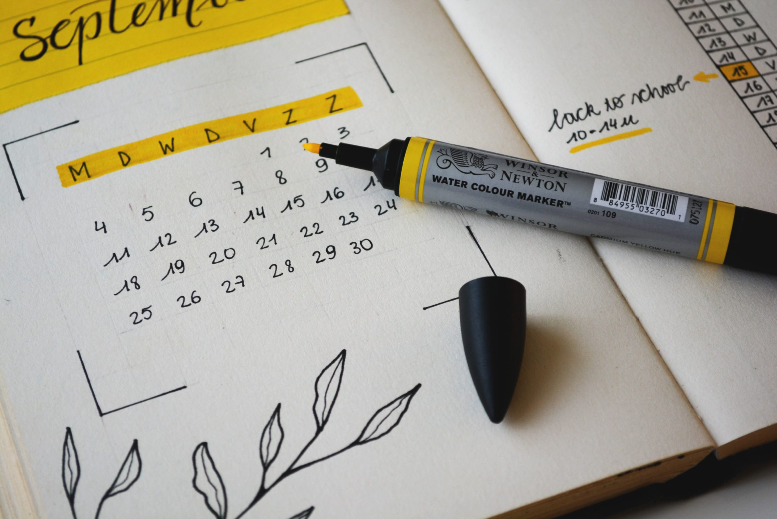 Cursusplanning januari-maart 2021 bekend!